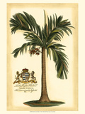 British Colonial Palm I Plakater