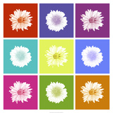 Vivid Bouquet Prints by Jason Johnson