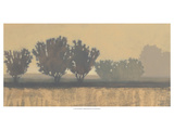 In the Distance I Premium Giclee Print by Norman Wyatt Jr.