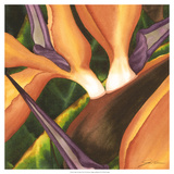 Bird of Paradise Tile II Giclee Print by Jason Higby