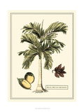 Crackled Paradise Palm I Posters