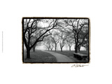 Foggy Morning Walk Giclee Print by Laura Denardo