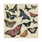 Butterflies & Linen I Posters