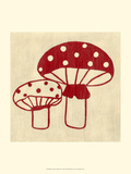 Best Friends - Mushrooms Prints by Chariklia Zarris