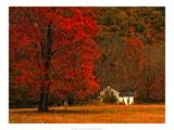 Farm House on a Autumn Morn' Posters af Danny Head