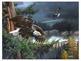 Wings of Freedom Reproduction procédé giclée Premium par Kevin Daniel