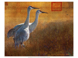 Walking Cranes Premium Giclee Print by Chris Vest