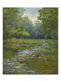 O'Bannon Creek Giclee Print by Mary Jean Weber