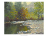 Quiet Reflection Giclee Print by Mary Jean Weber