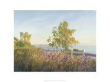 Highlands, Santa Monica, California Giclee Print by Michael G. Miller