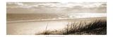 Ozon (Serigrafie) Giclée-Premiumdruck von Noah Bay