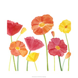 Simply Poppies II Print by Megan Meagher