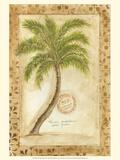Phoenix Date Palm Prints by Marianne D. Cuozzo