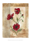 Red Poppies III Poster by Marianne D. Cuozzo