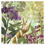 Foxglove Meadow II Giclee Print by R. Collier-Morales