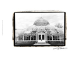 Conservatory III Giclee Print by Laura Denardo
