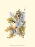 Chickadee and Oak Leaves Print by Janet Mandel