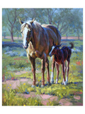 Made in the Shade Premium Giclee Print by Jack Sorenson