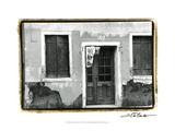The Doors of Venice VII Posters by Laura Denardo