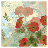 Summer Poppies II Premium Giclee Print by R. Collier-Morales