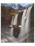 Adlerportrait Poster von Leo Stans