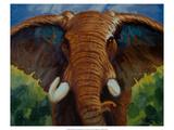 Bold Elephant II Premium Giclee Print by Robert Tate