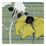 Layered Poppies II Prints by Jennifer Goldberger