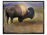 Bison Portrait II Kunstdruck von Chris Vest