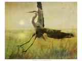 Foggy Heron II Kunstdrucke von Chris Vest