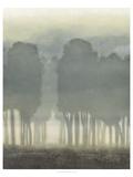 Treeline Haze I Umělecké plakáty