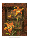 Day Lily I Pósters por Janet Stever