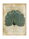 Antiquarian Birds V Prints