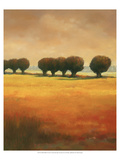 Pollard Willow II Premium Giclee Print by Graham Reynolds