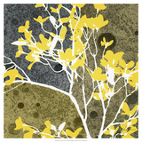 Moon Flowers III Giclee Print by James Burghardt