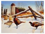 Pheasants II Premium Giclee Print by Leo Stans