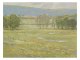 Summer Pasture I Giclee Print by Stephen Calcasola