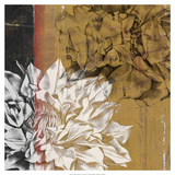 Bloom Illusion I Premium Giclee Print by Jennifer Goldberger