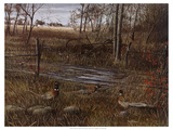 Backroad Gathering Giclee Print by Kevin Daniel