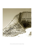Fences in the Sand III Print by Noah Bay