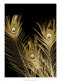 Plumes d'Or I Print by Jason Johnson