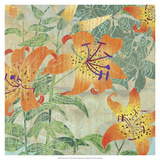 Tiger Lilies II Premium Giclee Print by R. Collier-Morales