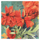 Poppy Play I Premium Giclee Print by R. Collier-Morales
