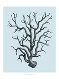 Coral on Aqua I Giclee Print