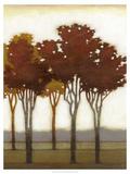Arboreal Grove II Posters by Norman Wyatt Jr.