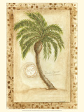 Licuala Grandis Palm Posters by Marianne D. Cuozzo