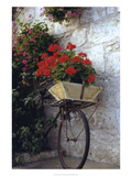 Flower Box Bike Reproduction procédé giclée par Meg Mccomb