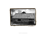 Barn Windows III Giclee Print by Laura Denardo