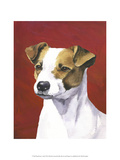 Dog Portrait, Jack Posters by Jill Sands