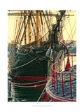 Tall Ships in Darling Harbour Giclee Print by Danny Head