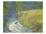 Inner Stream Giclee Print by Stephen Calcasola